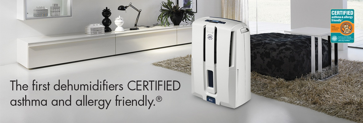 Dehumidifier To Provide Comfortable Air By Delonghi